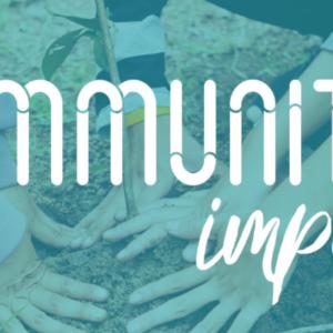 The Bridge's Community Impact